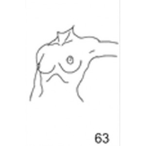 Anatomical Drawings, Left Tangential, Arm 90 degree, 2 Breasts