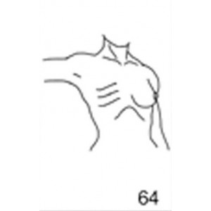 Anatomical Drawings, Right Tangential CW, Arm 90 Degree, 1 Breast