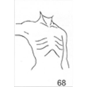 Anatomical Drawings, Right Tangential, Arm 90 Degree